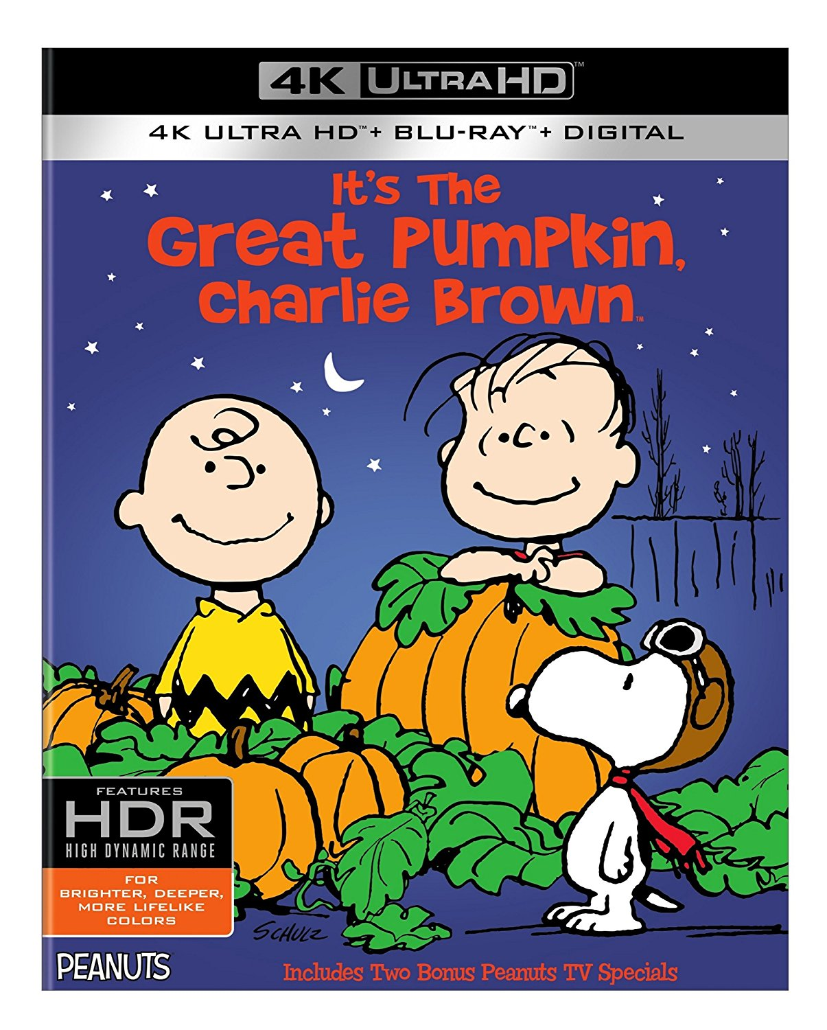 It's The Great Pumpkin Charlie Brown Quotes Gorgeous Its The Great Pumpkin Charlie Brown 4K  Daily Dead